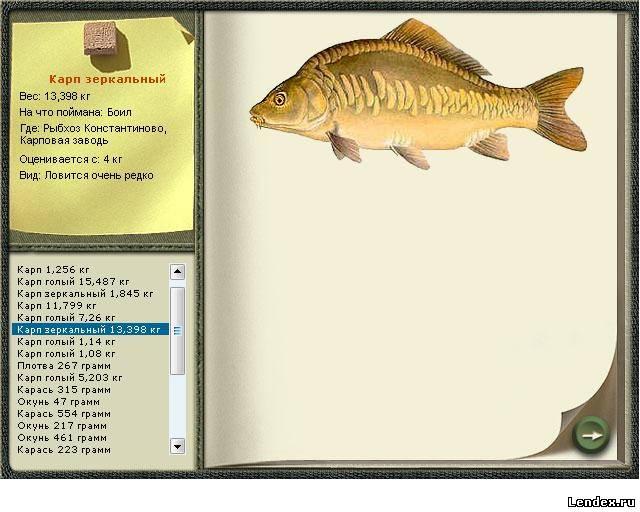 Рыбка из бечевки инструкция 200