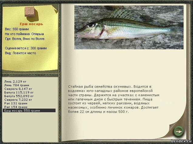 полные описание рыбалки