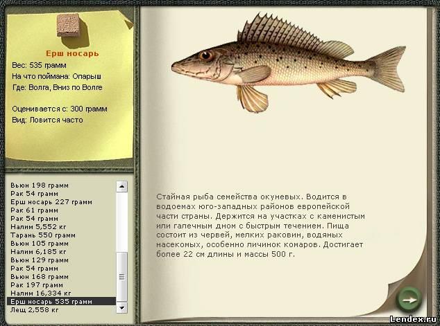 Игра русская рыбалка волге