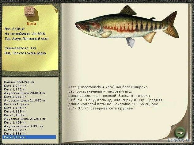 прогноз клева рыбы в томской области зырянского района