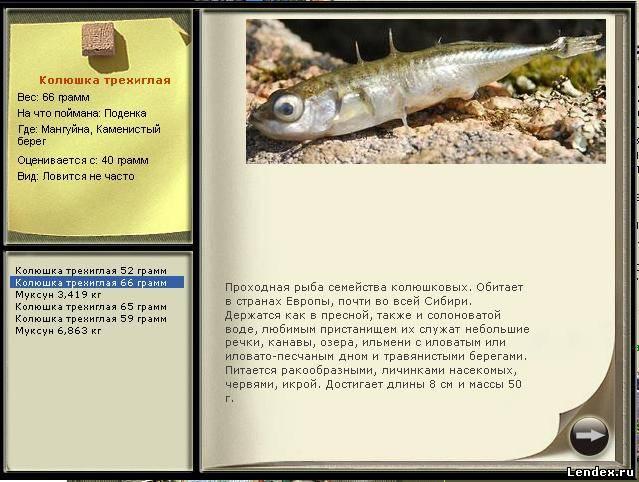 что такое поденка рыбалка