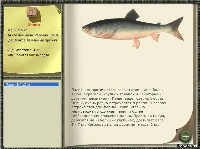 раковая выработка  к ловли рыбы