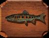 Рыба Голец якутский