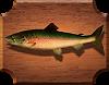 рыба Лосось Каспийский