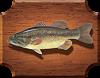 Окунь большеротый (Micropterus salmoides)
